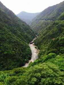 V字に切り込んだ祖谷の渓谷の上に宿はありました。
